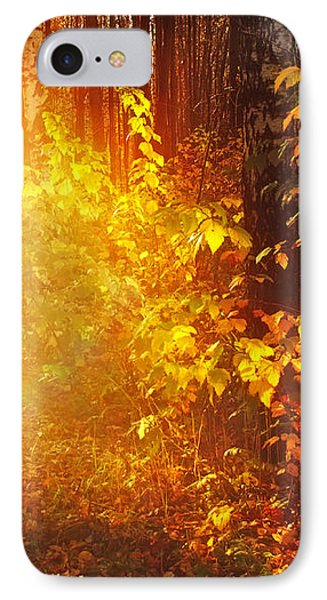 Swimming In Golden Light Phone Case by Jenny Rainbow