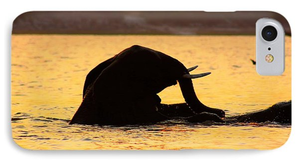 IPhone Case featuring the photograph Swimming Kalahari Elephants by Amanda Stadther
