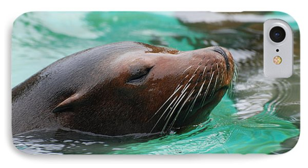 Swimming Sea Lion IPhone Case by DejaVu Designs
