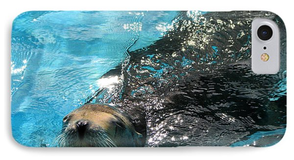IPhone Case featuring the photograph Swimming Sea Lion by Kristine Merc