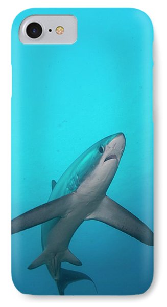 Swimming Thresher Shark IPhone Case by Scubazoo