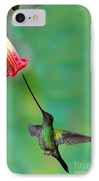 Sword-billed Hummingbird Phone Case by Anthony Mercieca