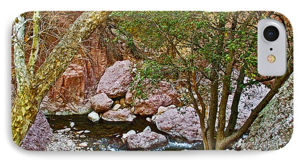 Sycamore And Cottonwood In Whitewater Catwalk National Recreation Trail Near Glenwood-new Mexico  IPhone Case by Ruth Hager