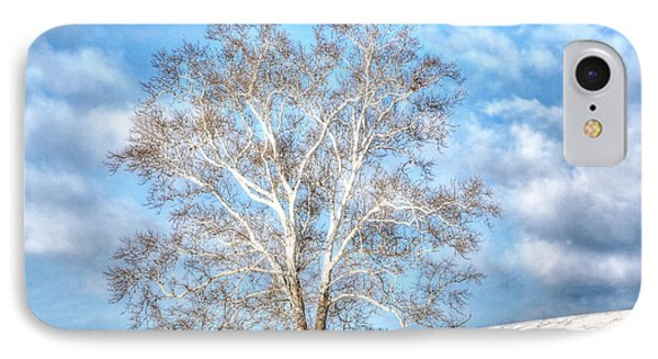 IPhone Case featuring the photograph Sycamore Winter by Jaki Miller