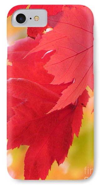 IPhone Case featuring the photograph Symphony Of Autumn 22 by France Laliberte