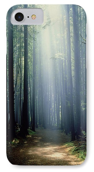 T. Bonderud Path Through Trees In Mist Phone Case by First Light