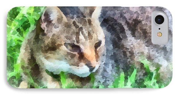 Tabby Cat Closeup Phone Case by Susan Savad