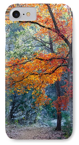 Take A Bough IPhone Case by Debbie Karnes