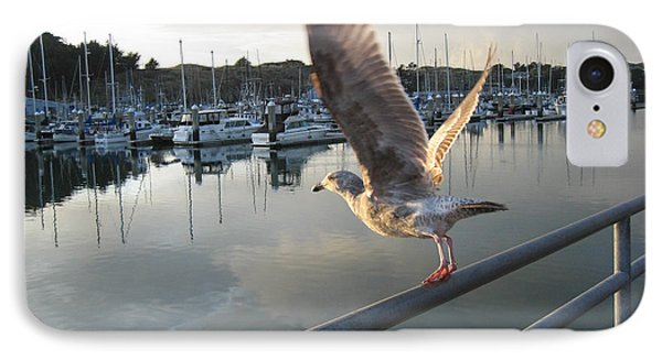 IPhone Case featuring the drawing Take Flight by Dianne Levy