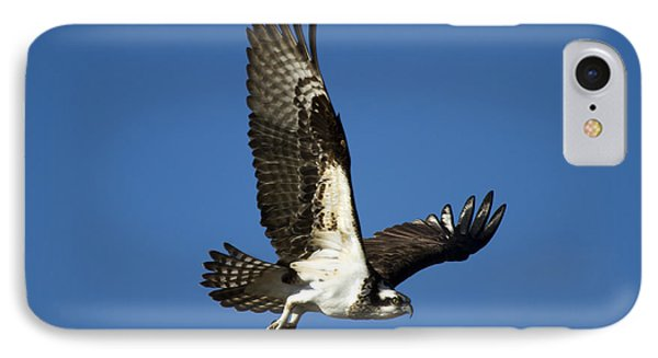 Take Flight IPhone Case by Mike  Dawson