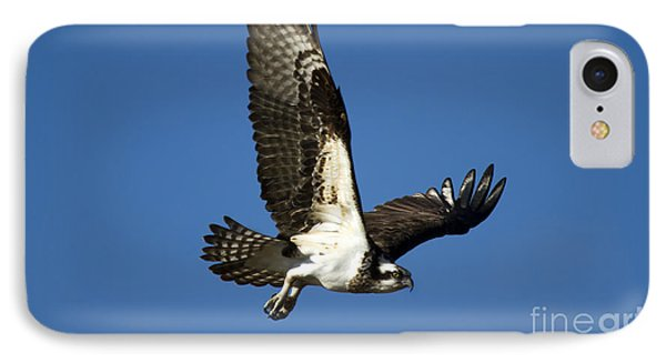 Take Flight IPhone Case