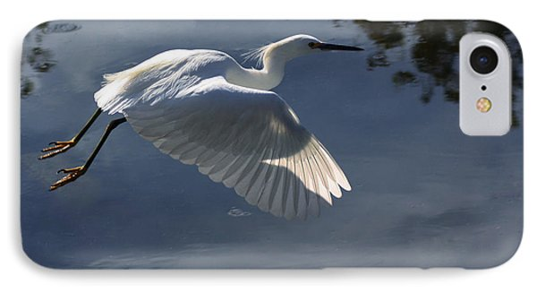 Taking Flight IPhone Case by Richard Stephen