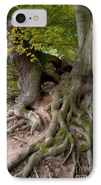 Taking Root Phone Case by Heiko Koehrer-Wagner