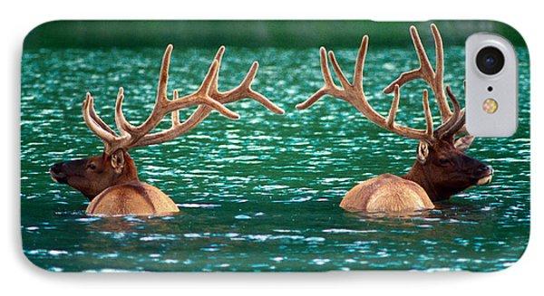 Talbot Lake Elk Phone Case by Terry Elniski