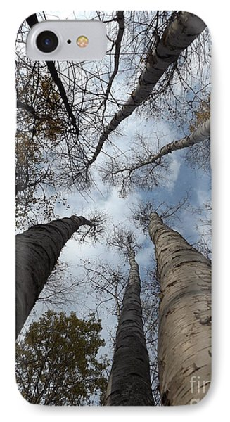 Tall Birch Circle IPhone Case by Erick Schmidt