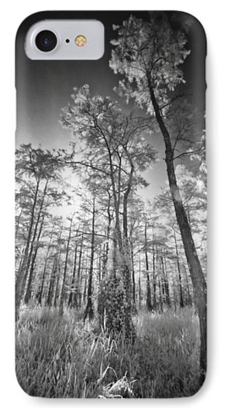 Tall Cypress Trees IPhone Case by Bradley R Youngberg