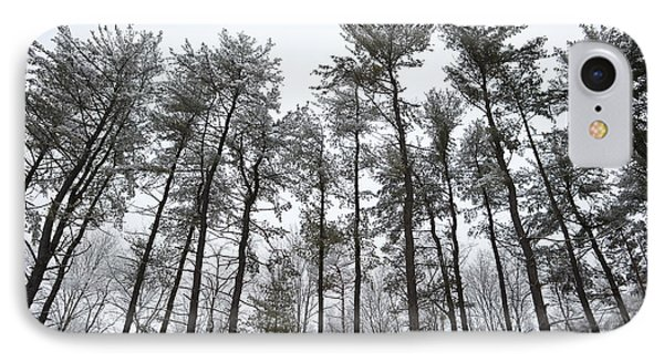 Tall Snow Covered Trees Phone Case by Sharon Dominick