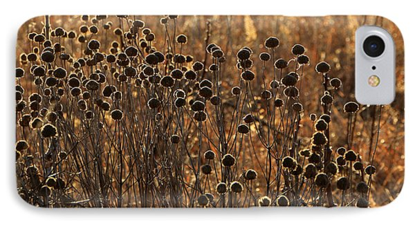 Tallgrass Morning IPhone Case by Christopher McKenzie