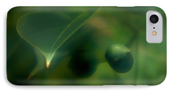 Tallow Tree IPhone Case by Travis Burgess