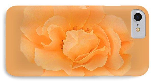 Tangerine Rose IPhone Case by Teresa Schomig