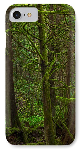IPhone Case featuring the photograph Tangled Forest by Jacqui Boonstra