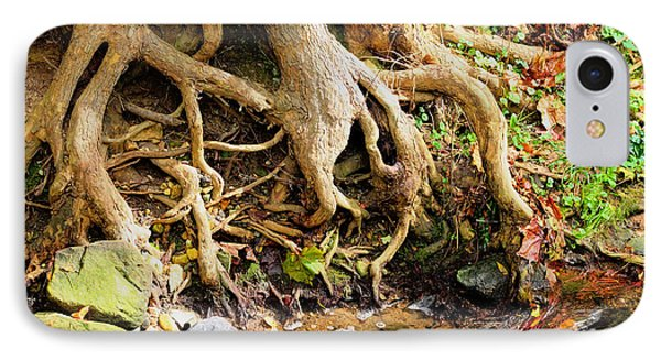 Tangled Tree Roots IPhone Case