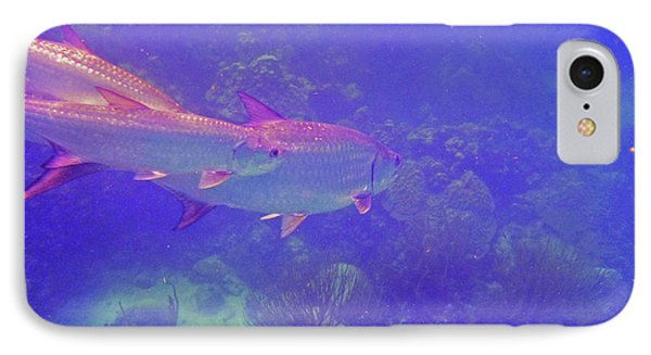 Tarpon Reef IPhone Case