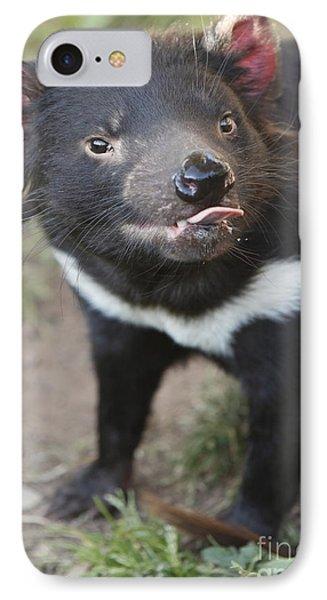 Tasmanian Devil IPhone Case by Craig Dingle