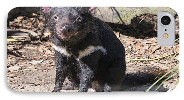 Tasmanian Devil Phone Case by Steven Ralser