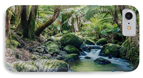 Tasmanian Rainforest Phone Case by Matteo Colombo