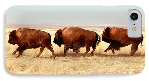 Tatanka IPhone Case by Todd Klassy