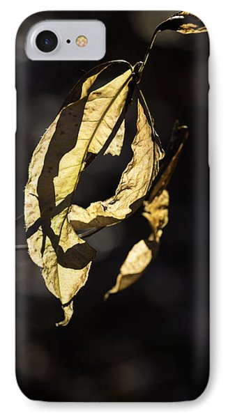 Tattered Leaf Phone Case by Fran Gallogly