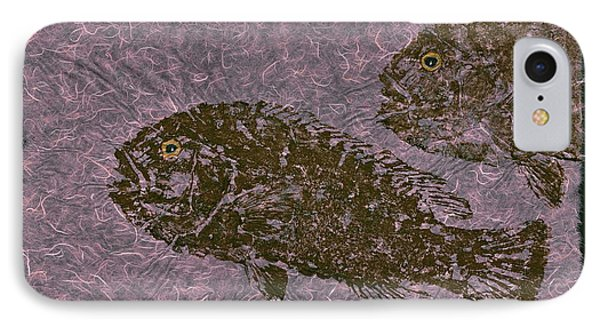Tautog On Bubble Gum Unryu Paper IPhone Case by Jeffrey Canha
