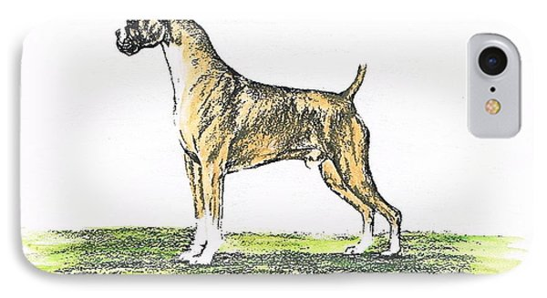 Tawny Boxer Phone Case by Joann Renner