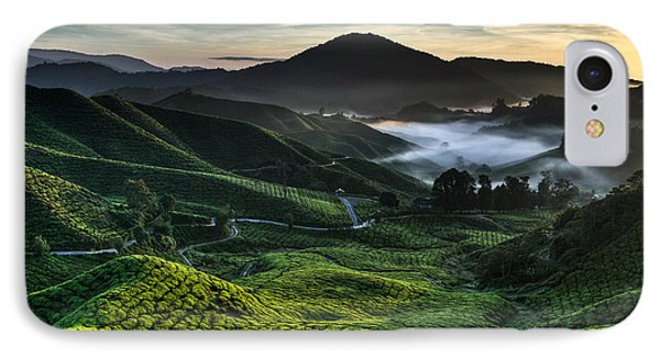 Tea Plantation At Dawn IPhone Case by Dave Bowman