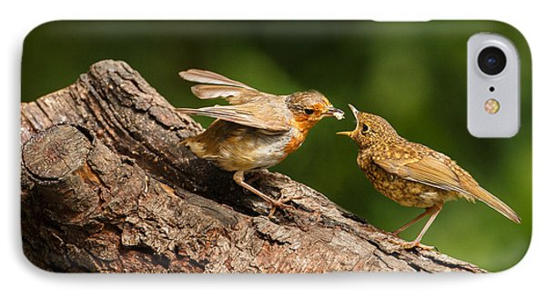 Tea Time For Robins IPhone Case