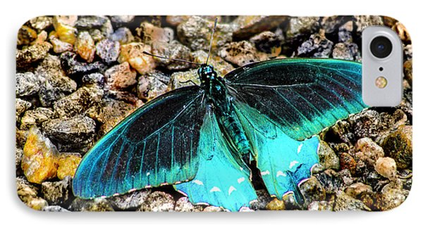 Teal On The Rocks IPhone Case by Karen Stephenson