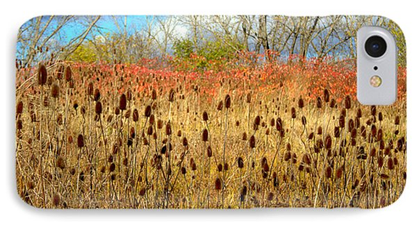 Teasels And More IPhone Case