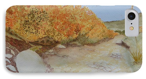 Tejas Creek Experiment - 7 IPhone Case by Joel Deutsch