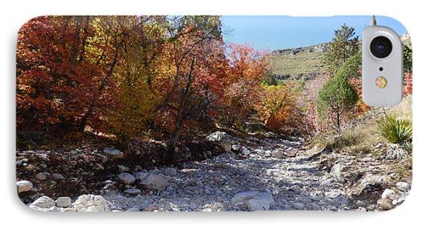 Tejas Trail In Fall IPhone Case by Joel Deutsch