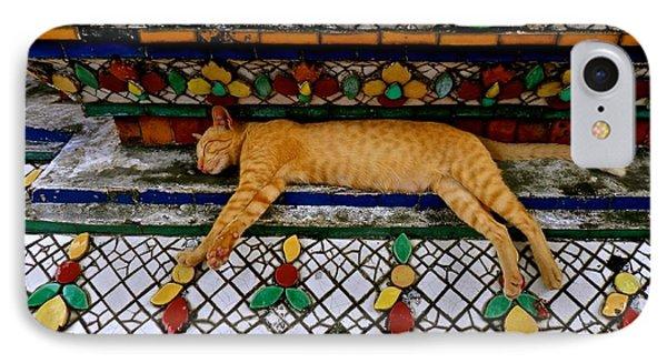 Temple Cat Nap IPhone Case by Joe Wyman