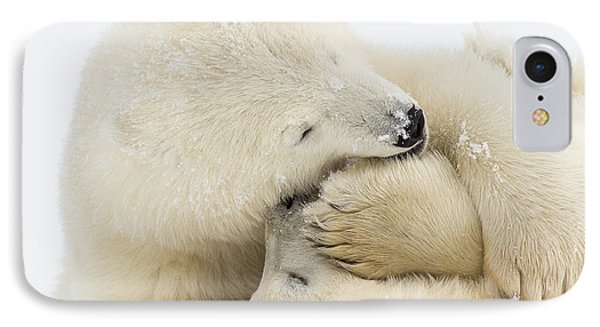 Tender Embrace IPhone Case by Tim Grams