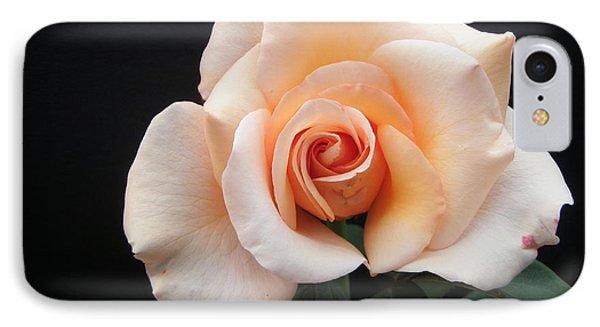 Tender Rose IPhone Case