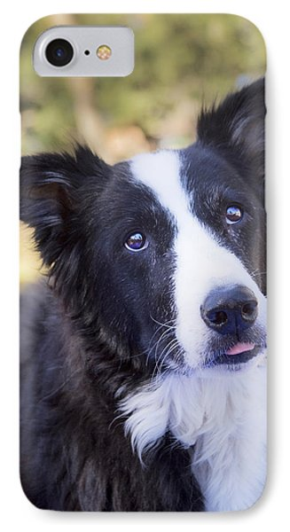 Tessie 4 IPhone Case