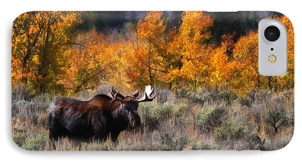 Teton Moose IPhone Case by Clare VanderVeen