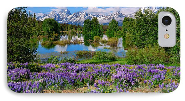 Teton Spring Lupines IPhone Case by Greg Norrell