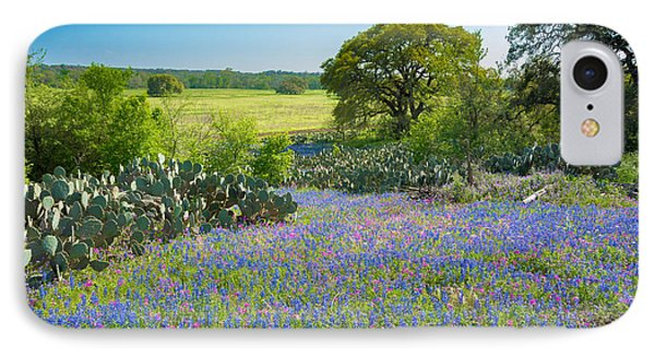Texas Bluebonnets And Cactus IPhone Case