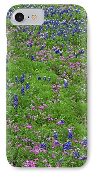 Texas Bluebonnets And Pointed Phlox IPhone Case