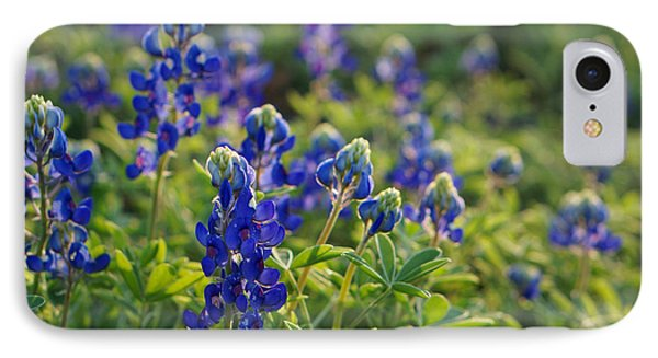 Texas Bluebonnets In Early Sun IPhone Case