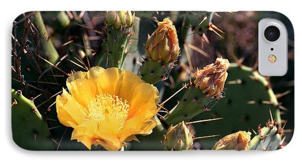 Texas Cactus IPhone Case